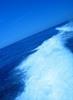 Thumbnail Vietnamese surf