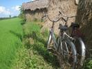 Thumbnail Rice paddy hut