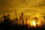 Thumbnail sunset